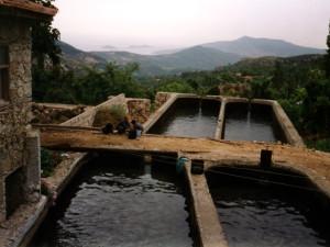 Village of Idlamlar
