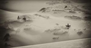 dune_a_cavallo