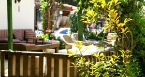 garden_dardanos_4